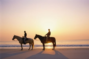 Horseback riding on Brigantine Beach in NJ