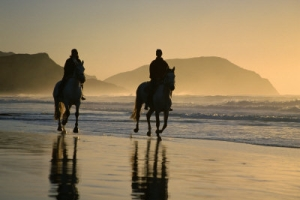 Horseback Riding on the Beach in New Jersey