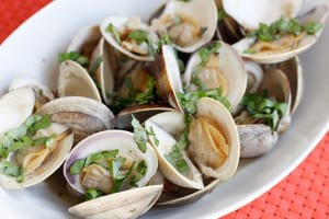 Best places to get clams in Point Pleasant NJ