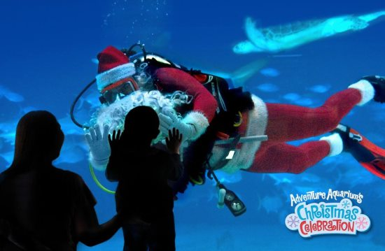 Adventure Aquarium 2015 Christmas Activities