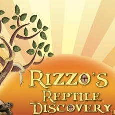 Rizzo's Animal Discovery's Newest and Coolest NJ Attraction