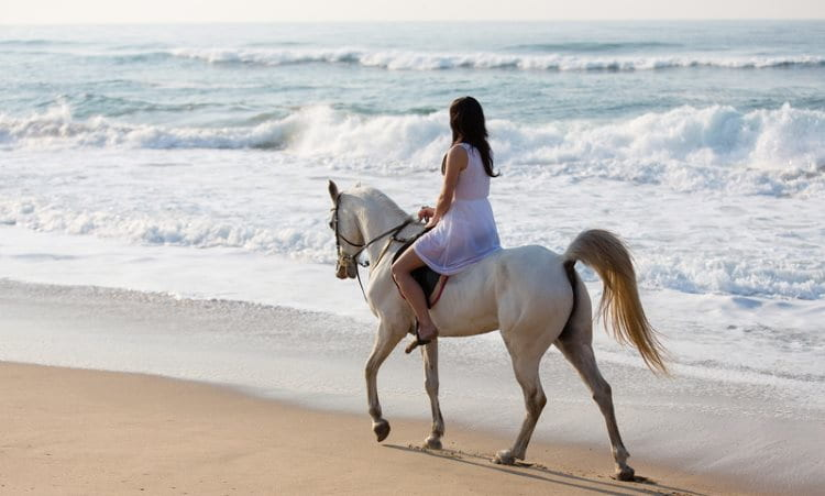 Image of a white horse and a girl with a light white dress going horseback riding on the beach near the water line on a beach at Island Beach State Park, a great place for things to do in NJ