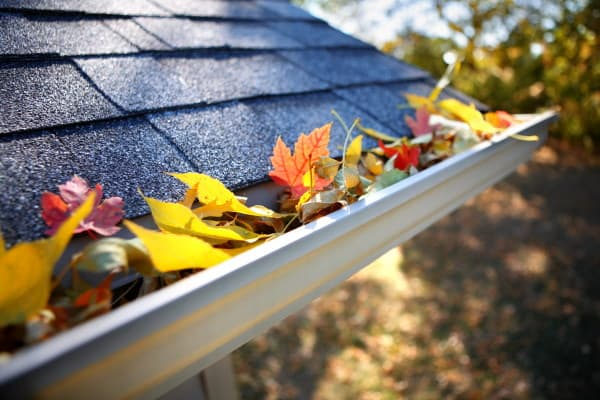 Image of a home with leaves stuck inside the gutters