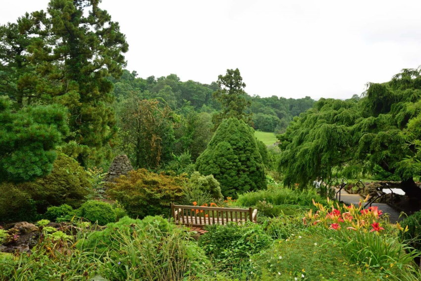 Image of a lush greenery at deep cut gardens in Middletown NJ